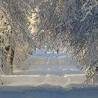 Day 15 3D LILA AFC: Winter Wonderland